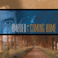 Coming Home — Amedeo Bianchi