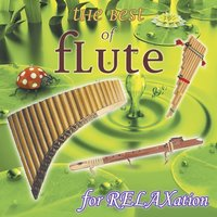 The Best of Flute, Vol. 2 : For Relaxation — Salaska