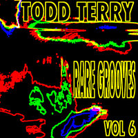 Todd Terry's Rare Grooves Vol. VI — Todd Terry, Black Riot, INES Project