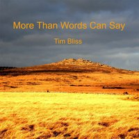 More Than Words Can Say — Tim Bliss