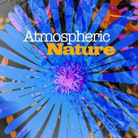 Atmospheric Nature — Ambiance Nature