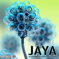 A Combination Of Things — Jaya