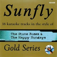 Sunfly Gold 30 In the Style of Stone Roses & Happy Mondays — Sunfly Karaoke