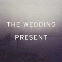 Search For Paradise : Singles 2004-5 — The Wedding Present