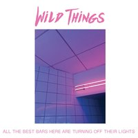 All the Best Bars Here Are Turning off Their Lights — Wild Things