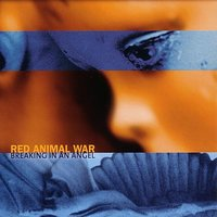 Breaking In An Angel — Red Animal War