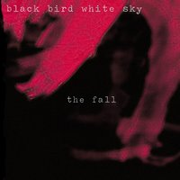 The Fall — Black Bird White Sky