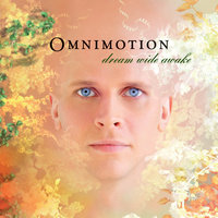 Dream Wide Awake — Omnimotion