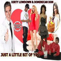 Just a Little Bit of You (feat. Dominican Don) — Dirty Lowdown