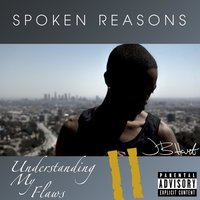 Understanding My Flaws 2 — Spoken Reasons