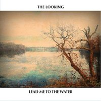 Lead Me to the Water — The Looking