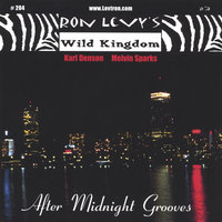 After Midnight Grooves — Ron Levy, Karl Denson, Melvin Sparks