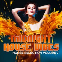 Midnight House Vibes, Vol. 7 — сборник