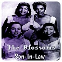 Son-In-Law — The Blossoms