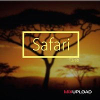 Safari — T3reb