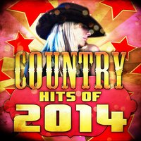 Country Hits of 2014 — American Heroes
