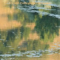 Vivaldi: Oboe Concerto, Violin Concertos, Guitar Concerto & Cello Concerto - Pachelbel: Canon in D Major - Bach: Air On the G String & Violin Concerto - Albinoni: Adagio in G Minor - Walter Rinaldi: Guitar Works and Piano Works - Beethoven: Fur Elise — Vivaldi Collegium Orchestra, Julius Frederick Rinaldi, Alessandro Paride Costantini & Walter Rinaldi