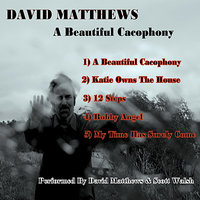 A Beautiful Cacophony — David Matthews