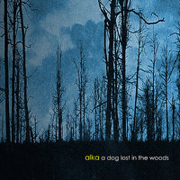 A Dog Lost In The Woods — Alka