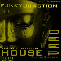 Funky JUnction Essential House  Deep — Xpans