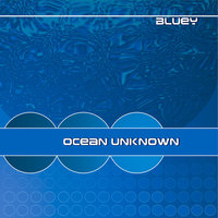 Ocean Unknown — Bluey