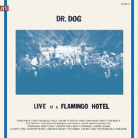 Live At A Flamingo Hotel — Dr. Dog