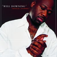 Sensual Journey — Will Downing