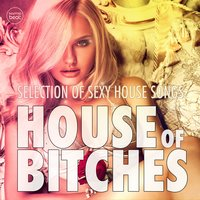 House Of Bitches, Vol. 1 — сборник