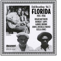 Field Recordings Vol. 7: Florida (1935-1936) — Various Artists - Document Records