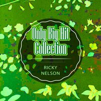 Only Big Hit Collection — Ricky Nelson, Rick Nelson