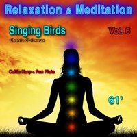 Relaxation & Meditation Vol. 6: Singing Birds (Chants d'oiseaux) — Neuilly