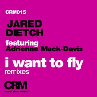 I Want to Fly, Pt. 2 — Jared Dietch, Jared Dietch feat. Adrienne Mack-Davis, Adrienne Mack-Davis