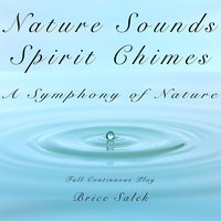 Nature Sounds and Spirit Chimes: A Symphony of Nature — Nature Sounds Brice Salek