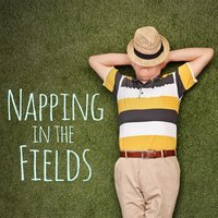 Napping in the Fields — Japanese Relaxation and Meditation, Deep Focus, Sleep Sounds of Nature