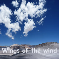 Wings of the Wind — Wesley Plass