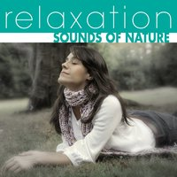 Relaxation: Sounds Of Nature — The Hit Crew