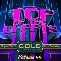 Immense Media Presents - Top of the Charts, Vol. 44 — сборник