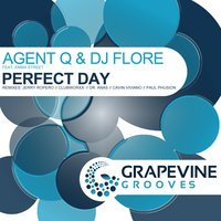 Perfect Day — Agent Q, DJ Flore