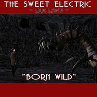The Sweet Electric - Born Wild — Liam Lynch
