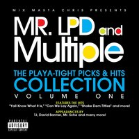 Playa-Tight Picks & Hits Collection, Vol. One — Mr. LPD & Multiple