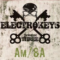 Electro Keys Am/8a Vol 3 — сборник
