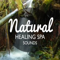 Natural Healing Spa Sounds — Healing Sounds for Deep Sleep and Relaxation, Green Nature Spa, Sonidos de la naturaleza Relajacion, Green Nature SPA|Healing Sounds for Deep Sleep and Relaxation|Sonidos de la naturaleza Relajacion