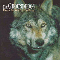 Hogs In Wolf's Clothing — The Groundhogs