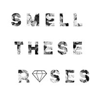Smell These Roses — The Holdup