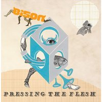 Pressing the Flesh — Bison