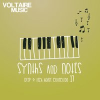 Synths and Notes 17 — сборник
