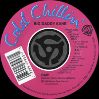 Raw / Word To The Mother[land] — Big Daddy Kane