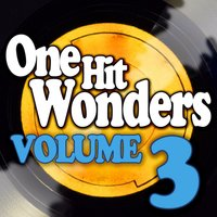 One Hit Wonders - Vol. 3 — The New Vaudeville Band
