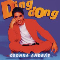 Ding-Dong — András Csonka