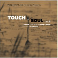 Peppermint Jam Pres. - Touch of Soul, Vol. 3 - 20 Soulful Tunes With the Love of Music, Selected by Deepwerk — сборник